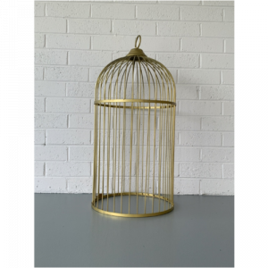 Gold Hanging Cage